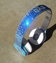 ICY BLUE Ombre Swarovski BLING Beats by Dre. Customize Your Beats!
