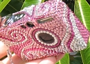Bling Your Digital Camera with Crystals!